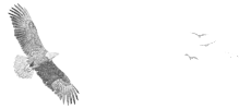 Belmont Bay Community Association Logo